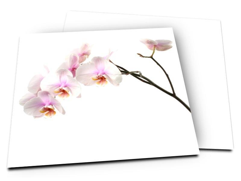 Remerciements mariage - Orchidée blanche