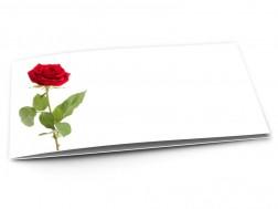 Faire-part mariage - La rose feuillue