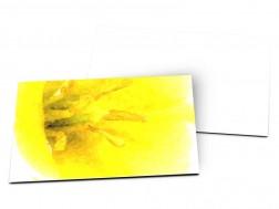 Carton d'invitation mariage - Sous le soleil