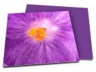 Remerciements mariage - Lumière violette